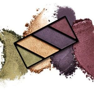 New Mary Kay Limited Edition Autumn Leaves Quad